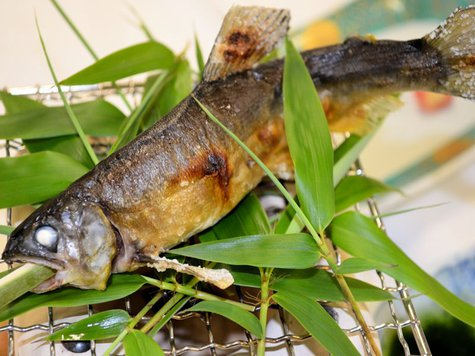特選「栃木の鮎尽くし」プラン:夏の料理プラン