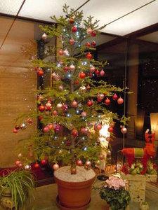 「二人のクリスマス」:グレードアッププラン
