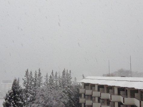 正月3日の風景