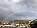 虹がでました。