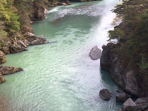 今日大吊橋で鬼怒川を見てきました。(4/27)