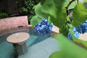 鬼怒の砦「深湯露天風呂」 紫陽花