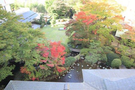 夢の季:今日の風景と日光の紅葉情報(10/29)