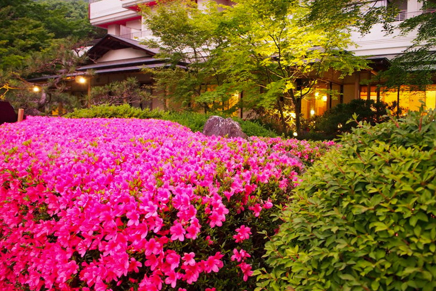 春の鬼怒川温泉